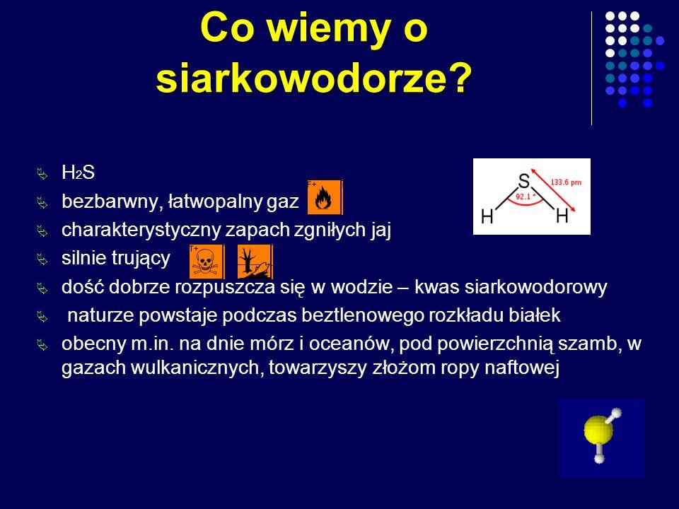 Co wiemy o siarkowodorze