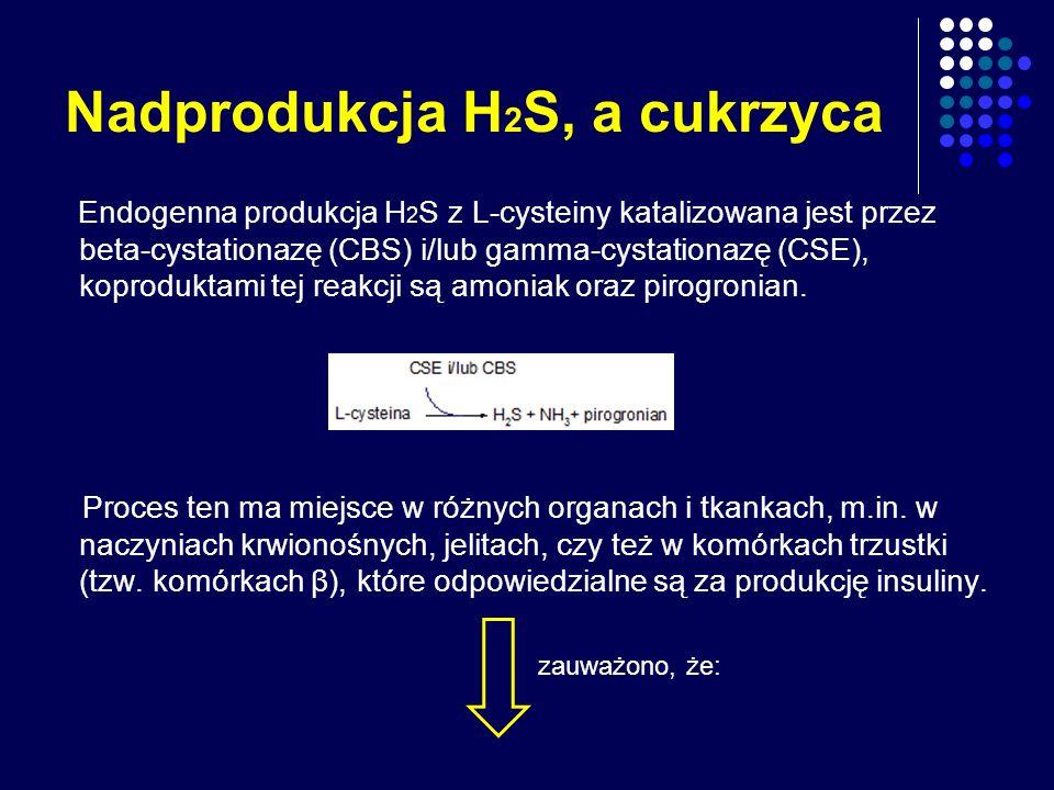 Nadprodukcja H2S, a cukrzyca