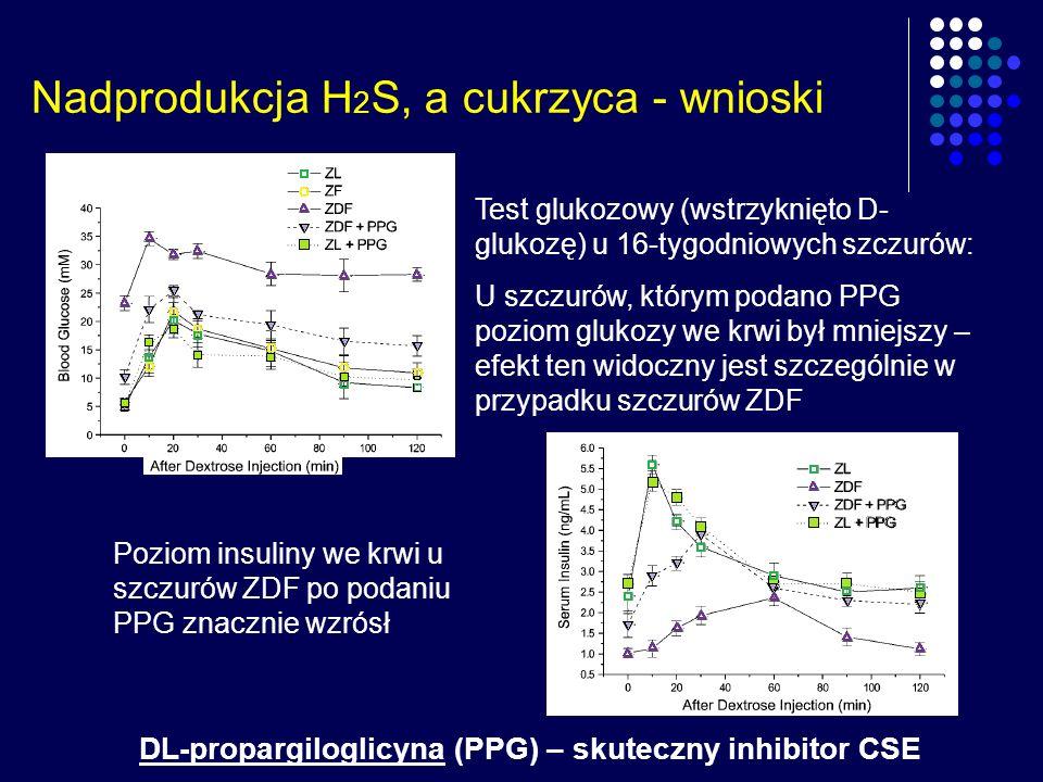 Nadprodukcja H2S, a cukrzyca - wnioski