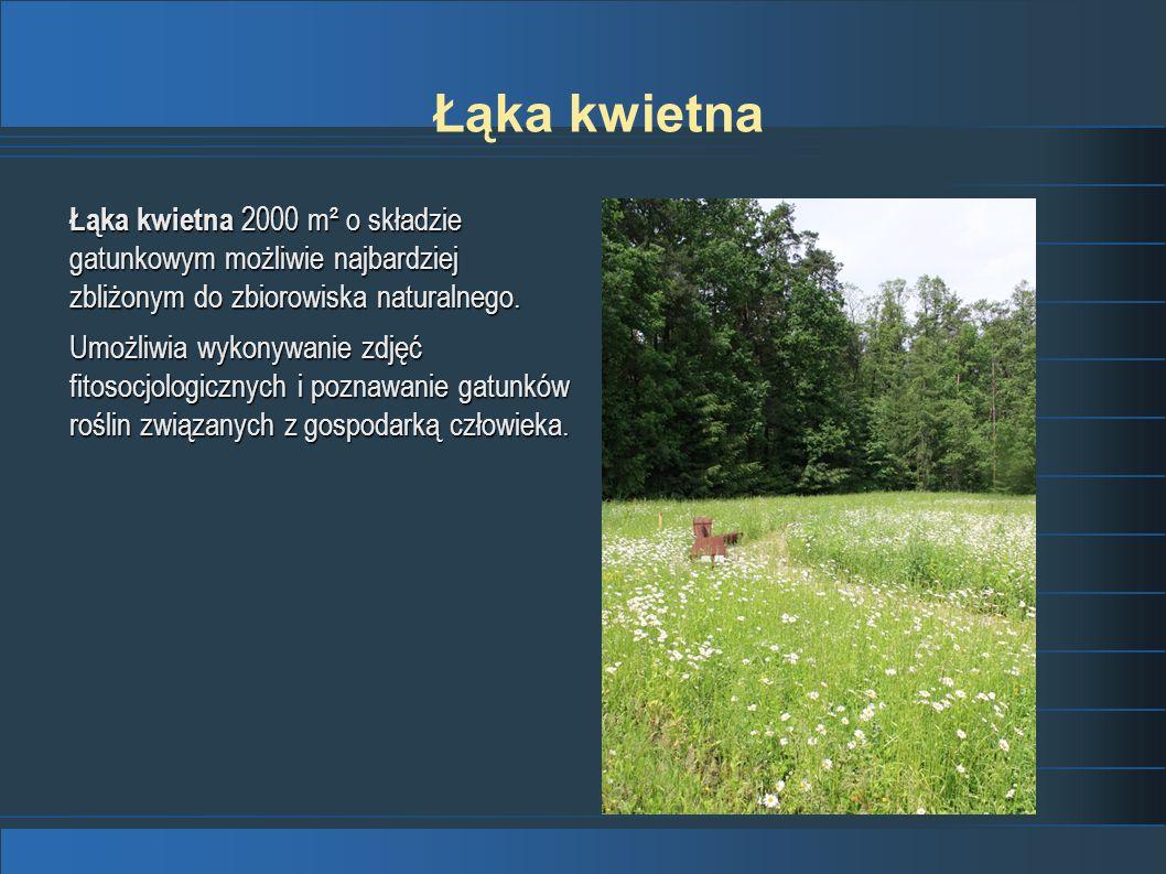 Łąka kwietnaŁąka kwietna 2000 m² o składzie gatunkowym możliwie najbardziej zbliżonym do zbiorowiska naturalnego.