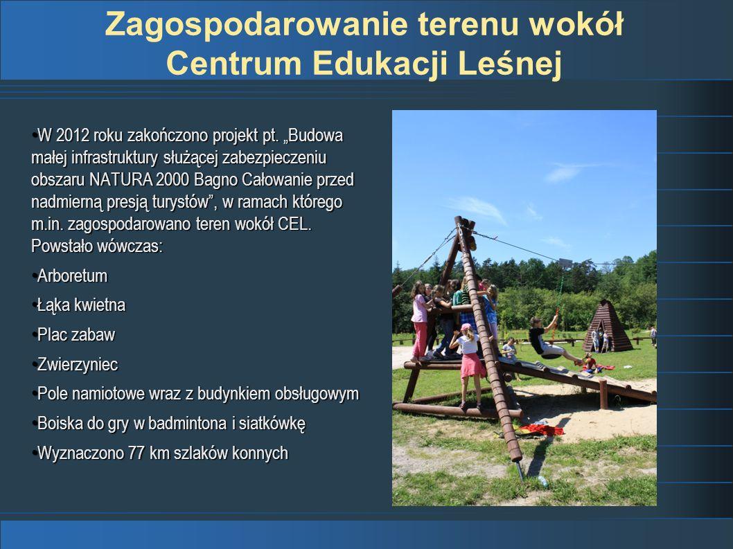 Zagospodarowanie terenu wokół Centrum Edukacji Leśnej