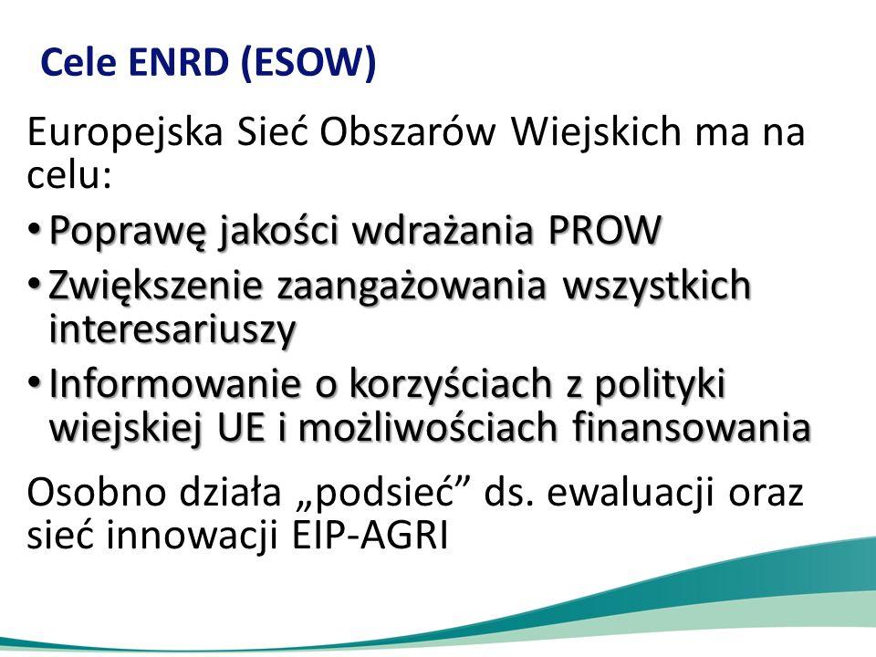 Europejska Sieć Obszarów Wiejskich ma na celu:
