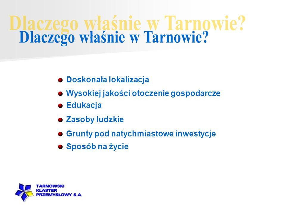 Dlaczego właśnie w Tarnowie