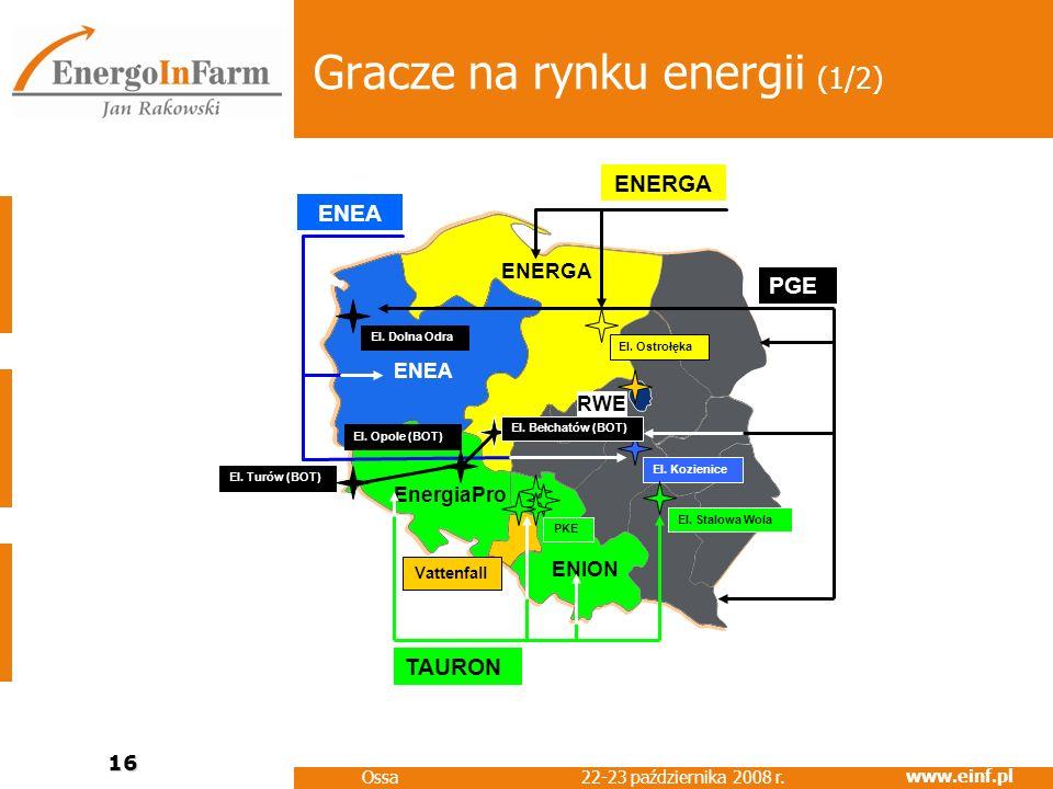 Gracze na rynku energii (1/2)