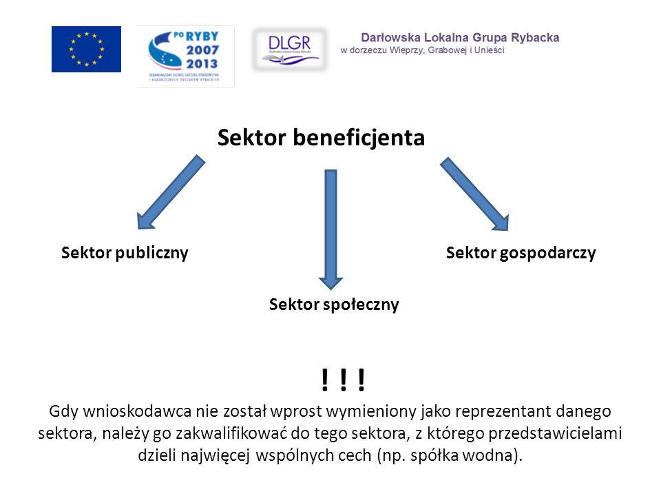 Sektor beneficjenta Sektor publiczny Sektor gospodarczy