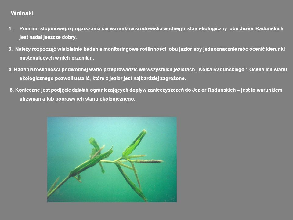 WnioskiPomimo stopniowego pogarszania się warunków środowiska wodnego stan ekologiczny obu Jezior Raduńskich jest nadal jeszcze dobry.