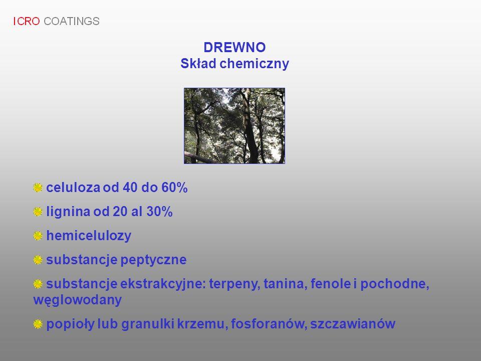 DREWNO Skład chemiczny