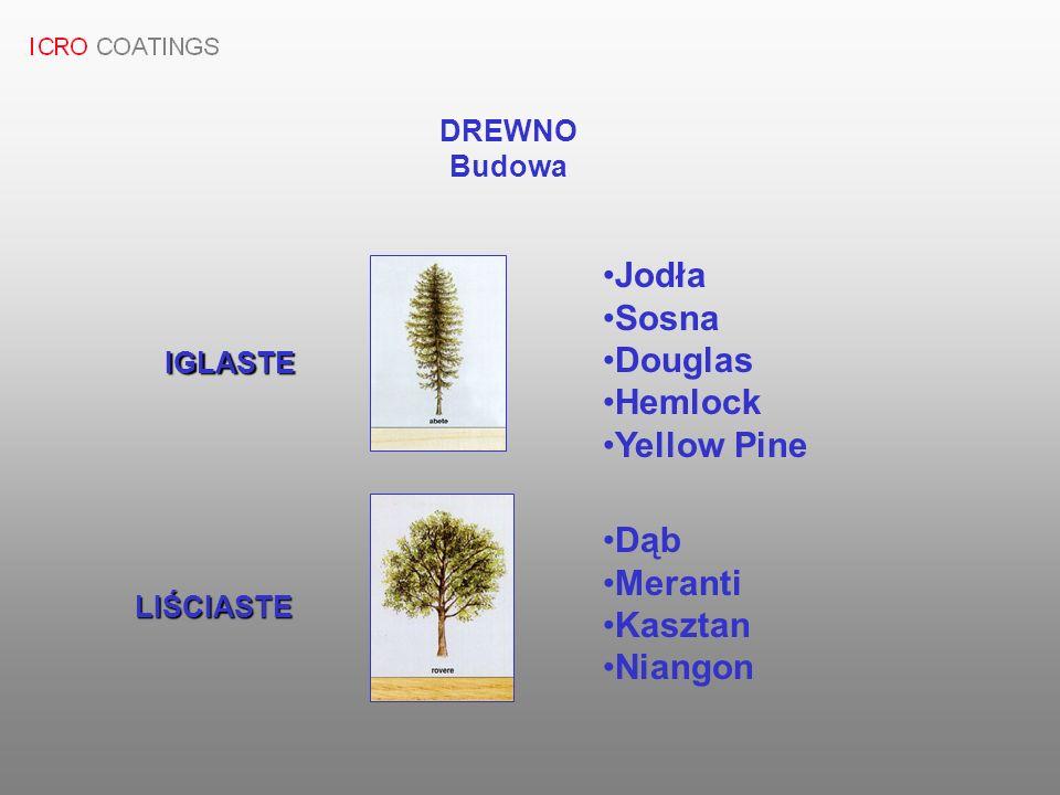 Jodła Sosna Douglas Hemlock Yellow Pine Dąb Meranti Kasztan Niangon