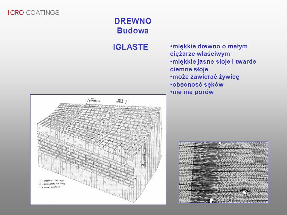 DREWNO Budowa IGLASTE miękkie drewno o małym ciężarze właściwym