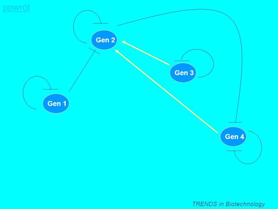 powrót Gen 2 Gen 3 Gen 1 Gen 4 TRENDS in Biotechnology
