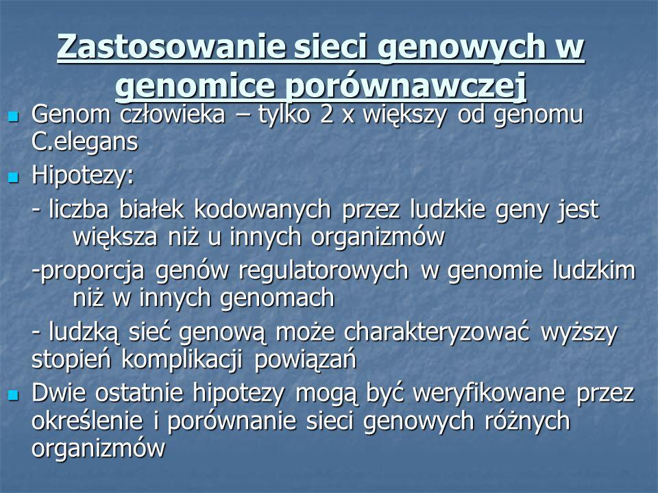Zastosowanie sieci genowych w genomice porównawczej