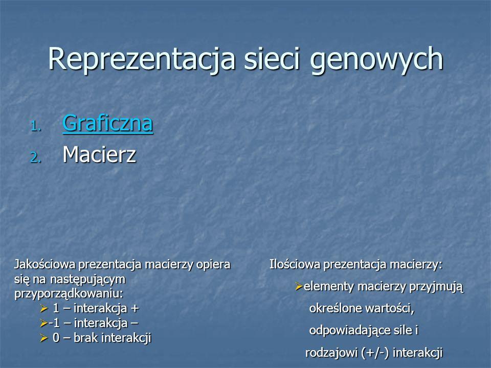 Reprezentacja sieci genowych