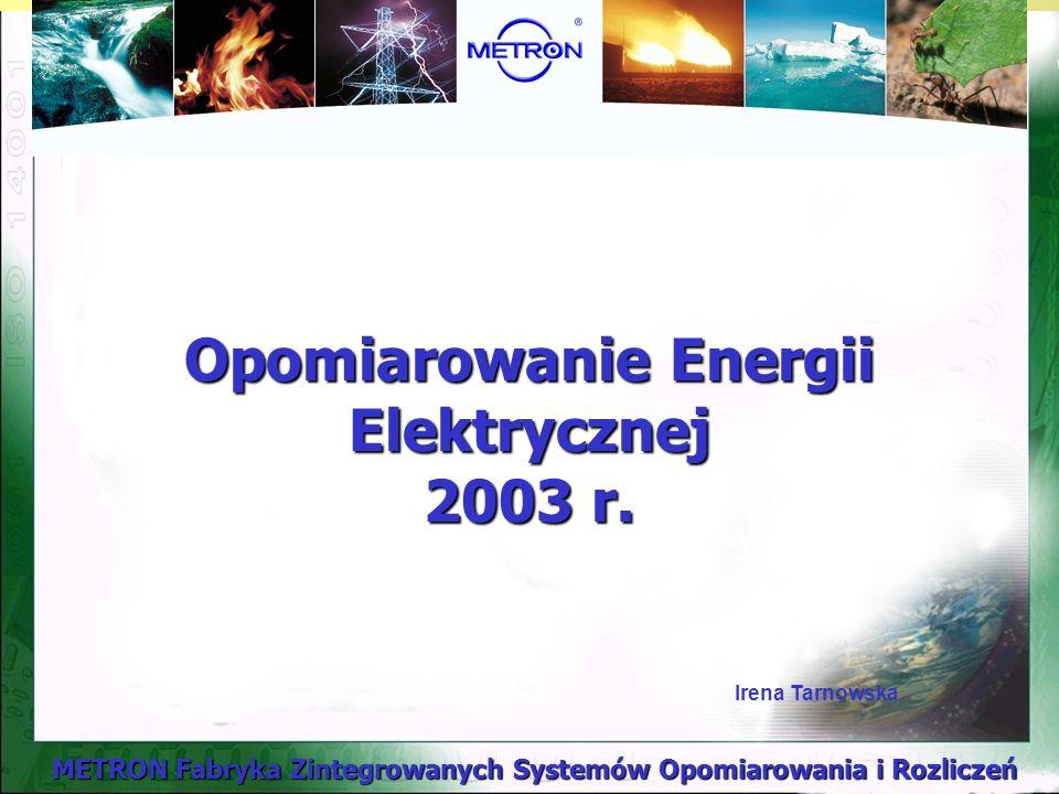 Opomiarowanie Energii Elektrycznej 2003 r.