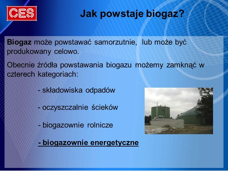 Jak powstaje biogaz Biogaz może powstawać samorzutnie, lub może być produkowany celowo.