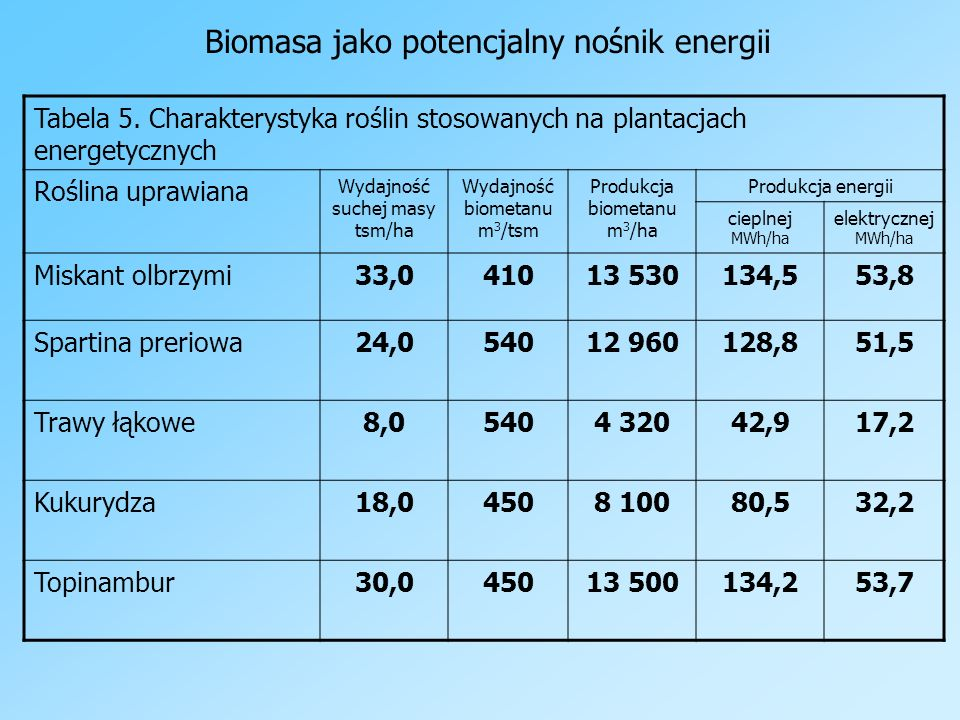 Biomasa jako potencjalny nośnik energii