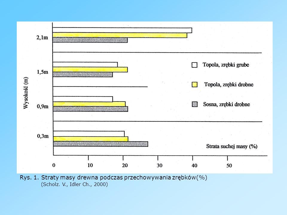 Rys. 1. Straty masy drewna podczas przechowywania zrębków(%). (Scholz