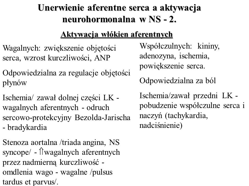 Unerwienie aferentne serca a aktywacja neurohormonalna w NS - 2.