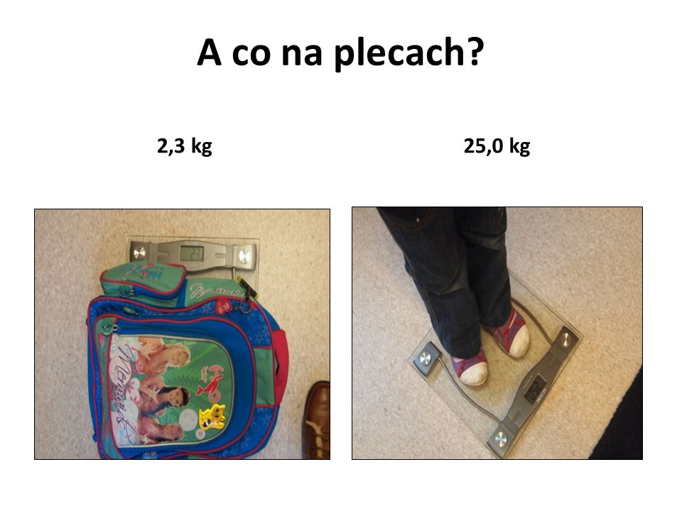 A co na plecach 2,3 kg 25,0 kg