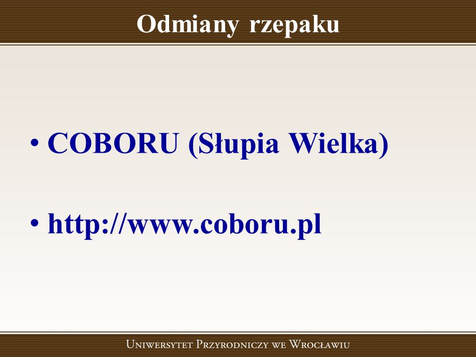 COBORU (Słupia Wielka) http://www.coboru.pl