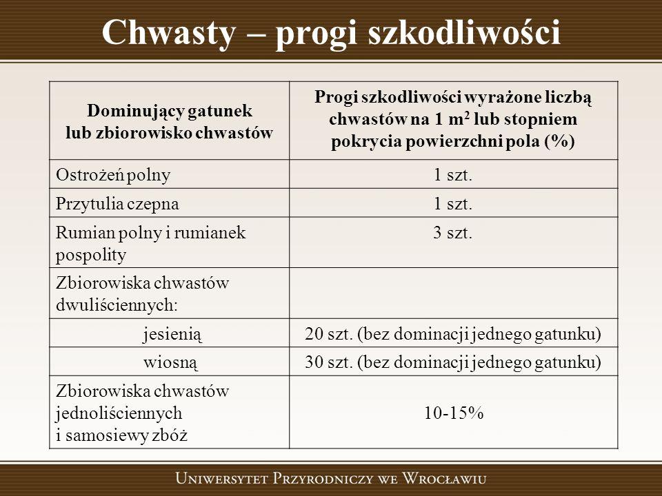 Chwasty – progi szkodliwości lub zbiorowisko chwastów
