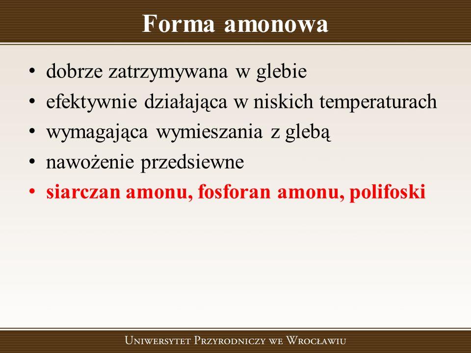 Forma amonowa dobrze zatrzymywana w glebie