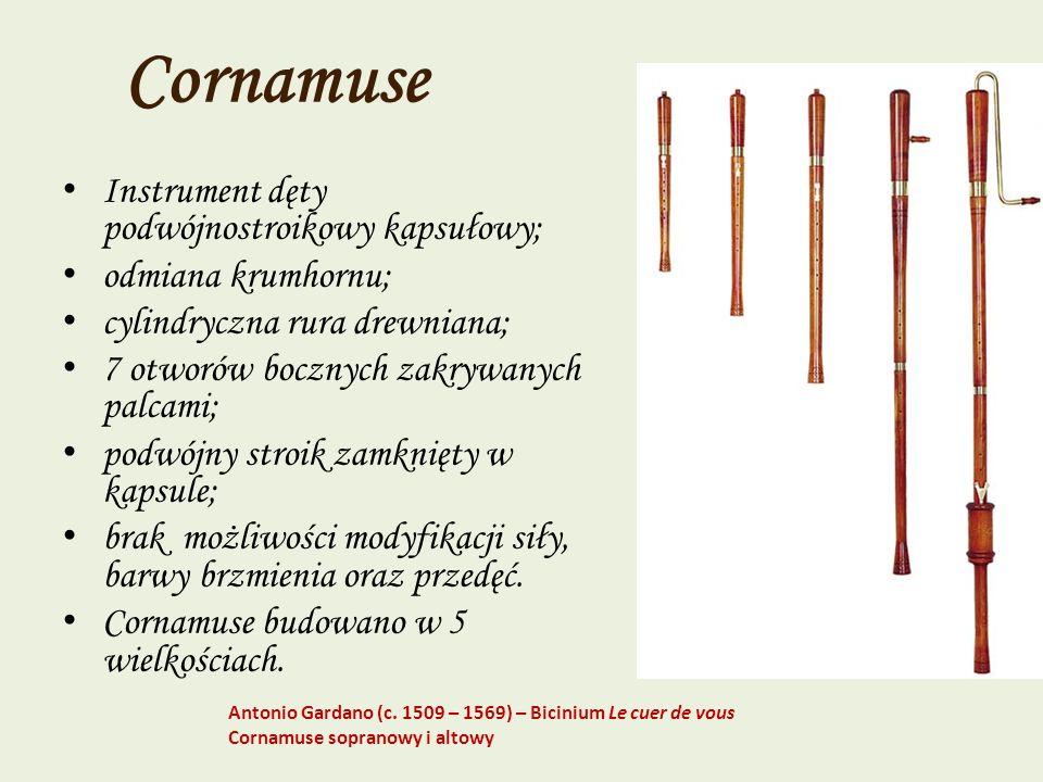 Cornamuse Instrument dęty podwójnostroikowy kapsułowy;
