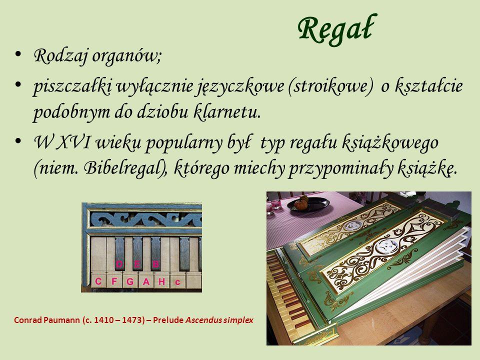 Regał Rodzaj organów; piszczałki wyłącznie języczkowe (stroikowe) o kształcie podobnym do dziobu klarnetu.