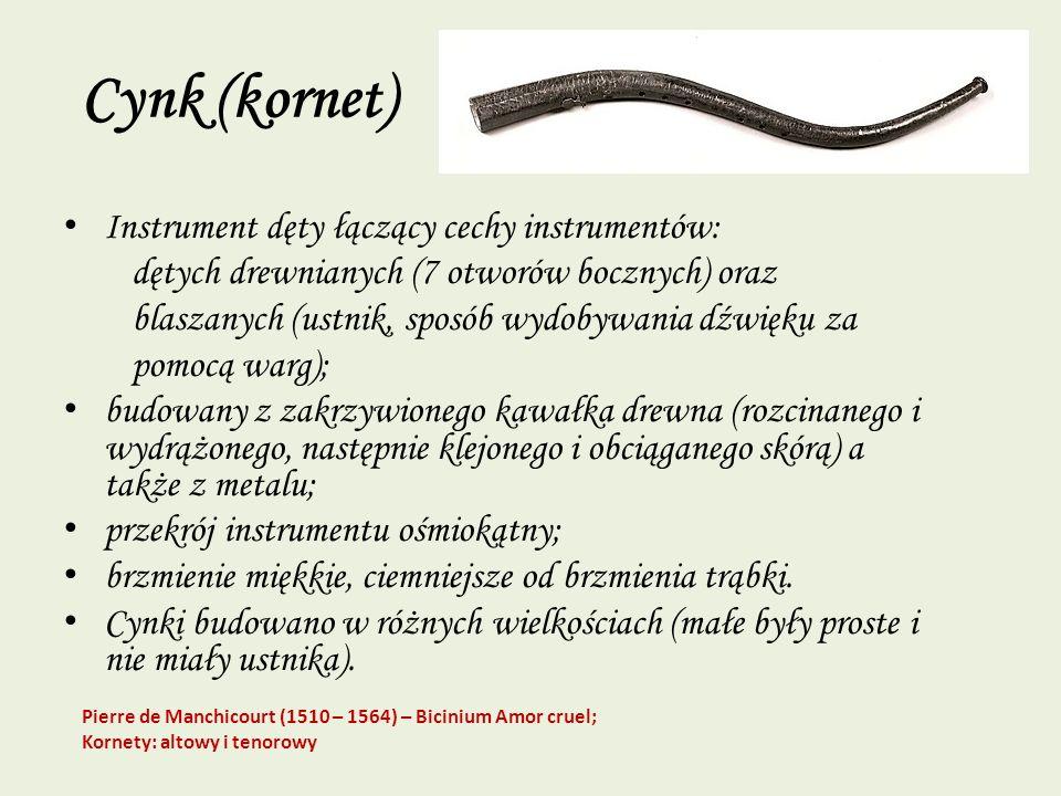 Cynk (kornet) Instrument dęty łączący cechy instrumentów: