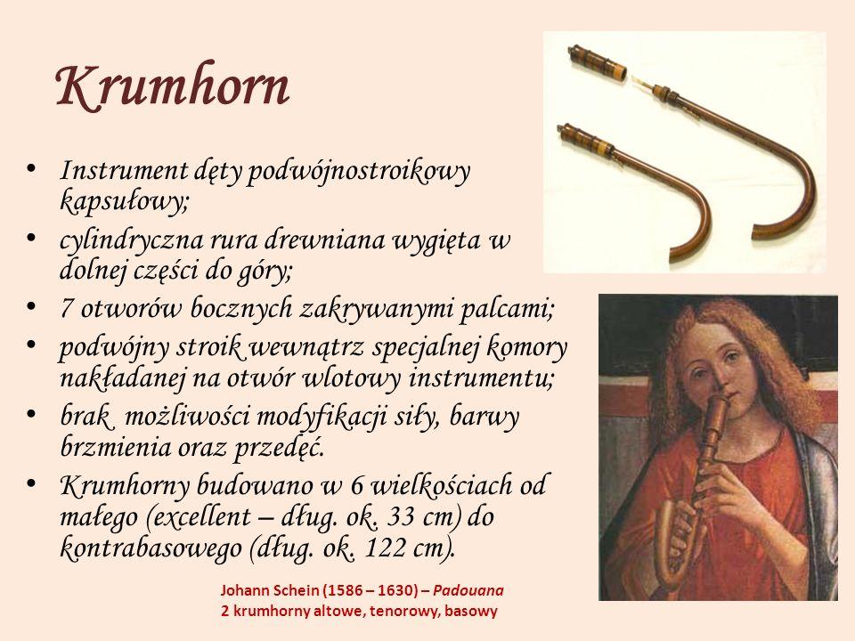 Krumhorn Instrument dęty podwójnostroikowy kapsułowy;