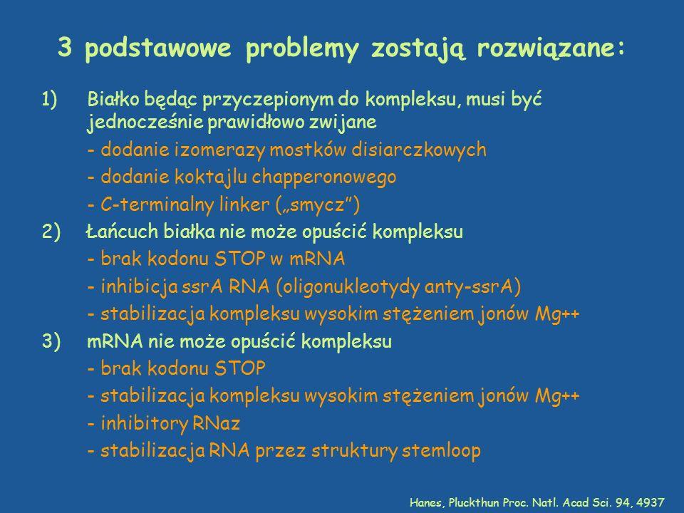 3 podstawowe problemy zostają rozwiązane: