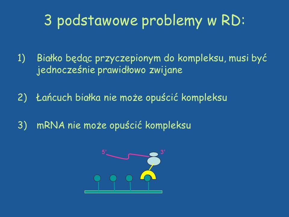 3 podstawowe problemy w RD: