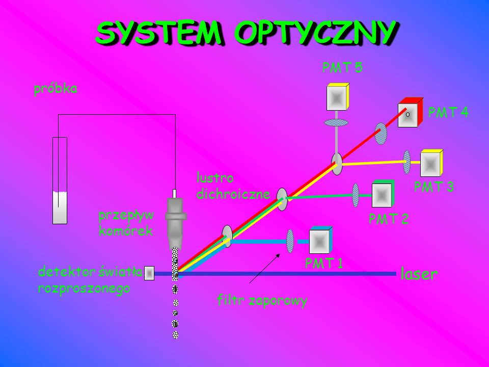 SYSTEM OPTYCZNY laser PMT 5 próbka PMT 4 lustro dichroiczne PMT 3