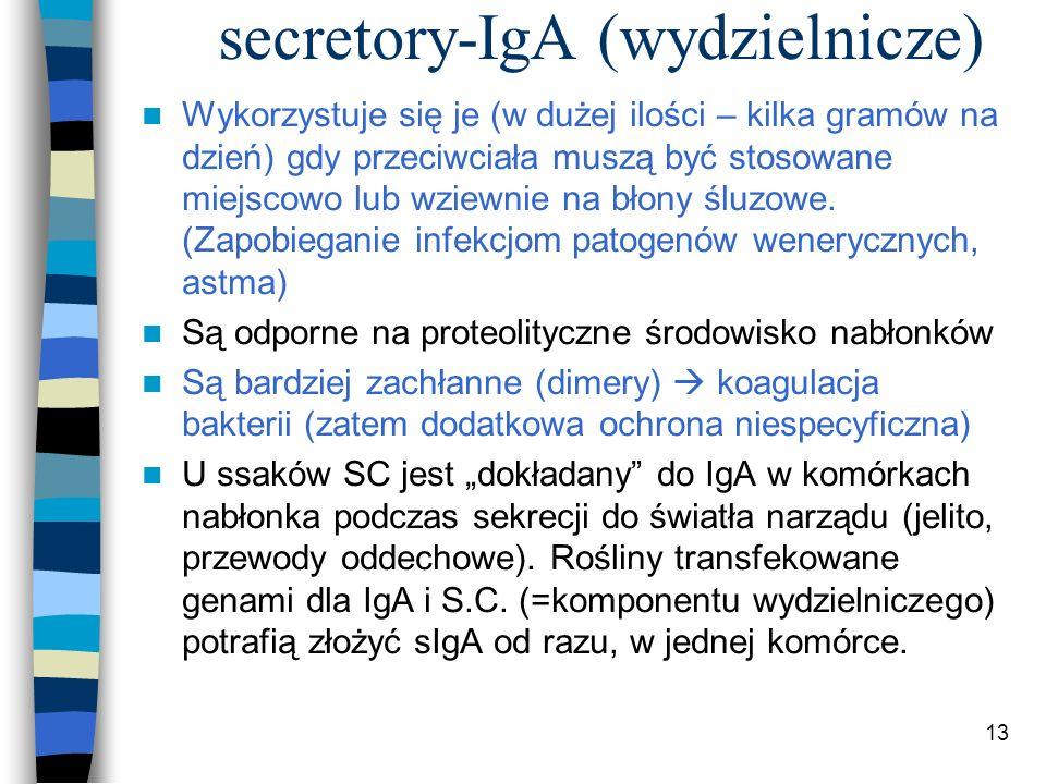 secretory-IgA (wydzielnicze)