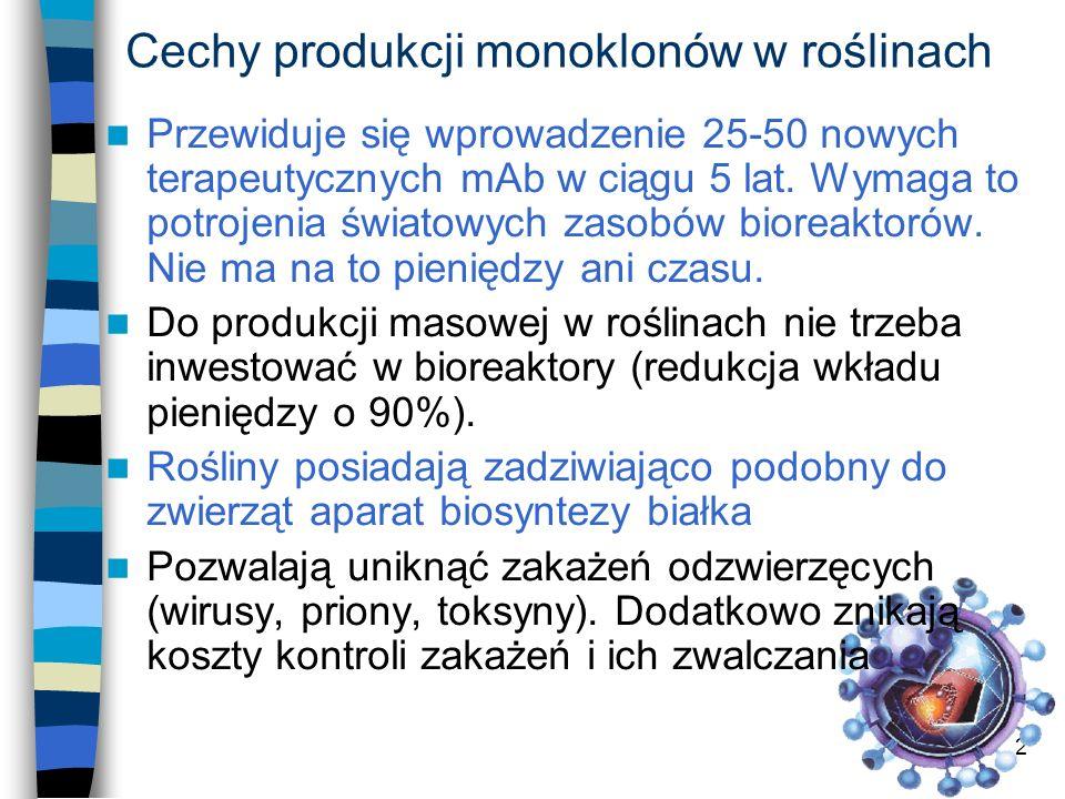 Cechy produkcji monoklonów w roślinach