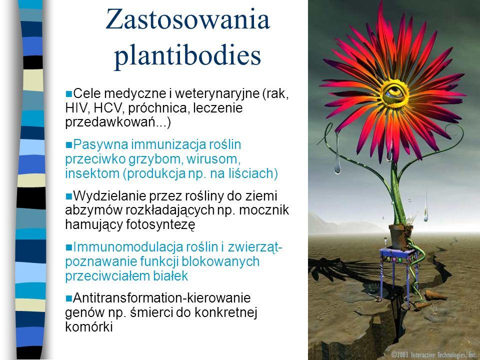 Zastosowania plantibodies