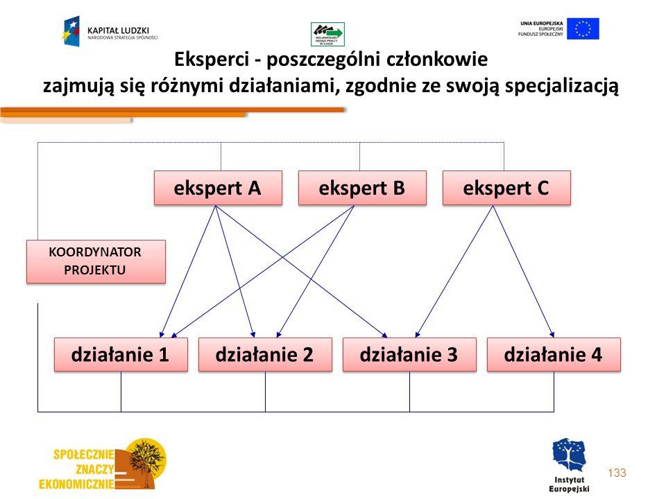 Eksperci - poszczególni członkowie zajmują się różnymi działaniami, zgodnie ze swoją specjalizacją
