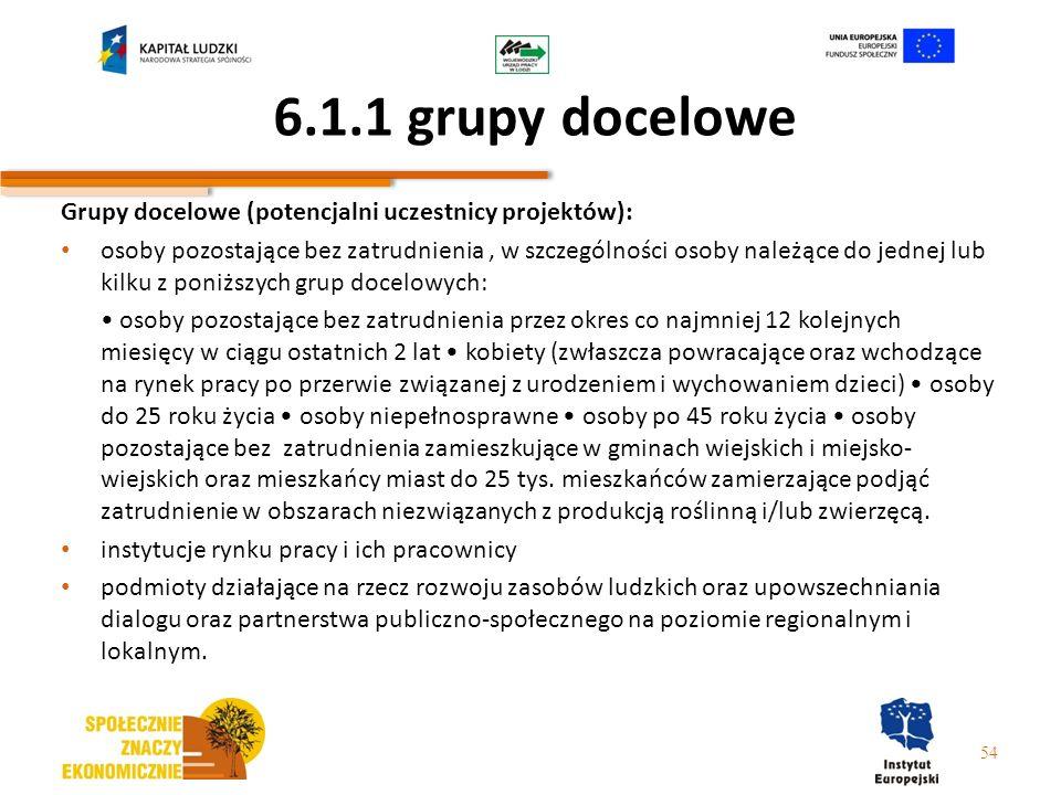 6.1.1 grupy docelowe Grupy docelowe (potencjalni uczestnicy projektów):