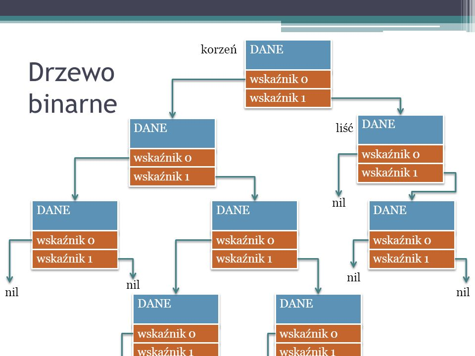 Drzewo binarne korzeń DANE wskaźnik 0 wskaźnik 1 DANE wskaźnik 0