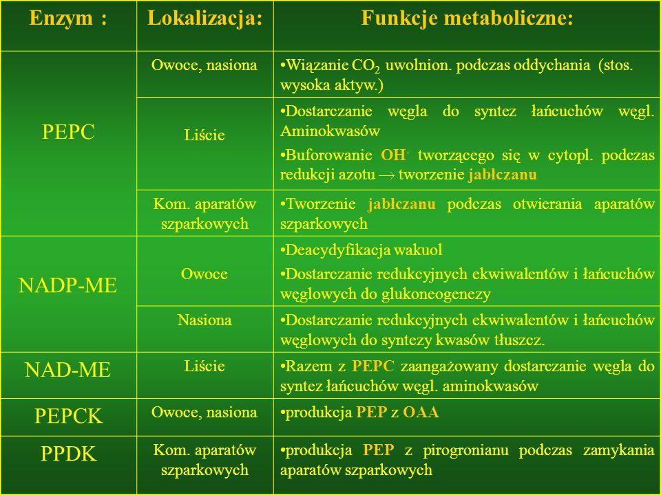 Funkcje metaboliczne: