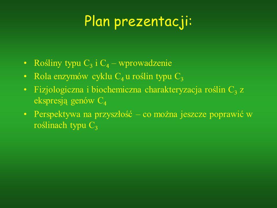 Plan prezentacji: Rośliny typu C3 i C4 – wprowadzenie