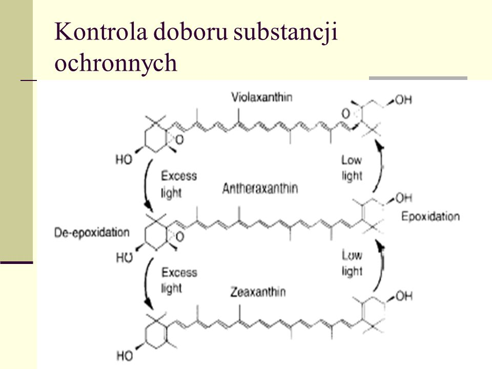 Kontrola doboru substancji ochronnych