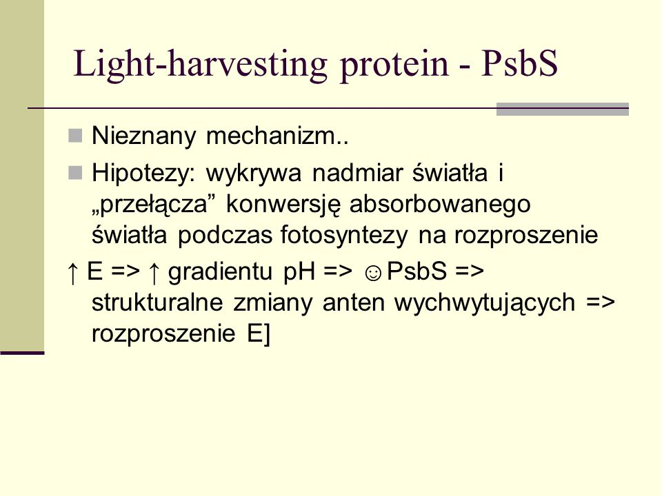 Light-harvesting protein - PsbS