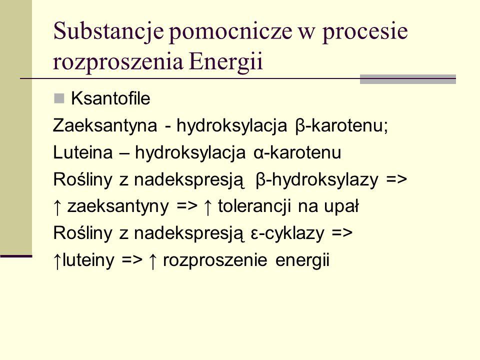 Substancje pomocnicze w procesie rozproszenia Energii
