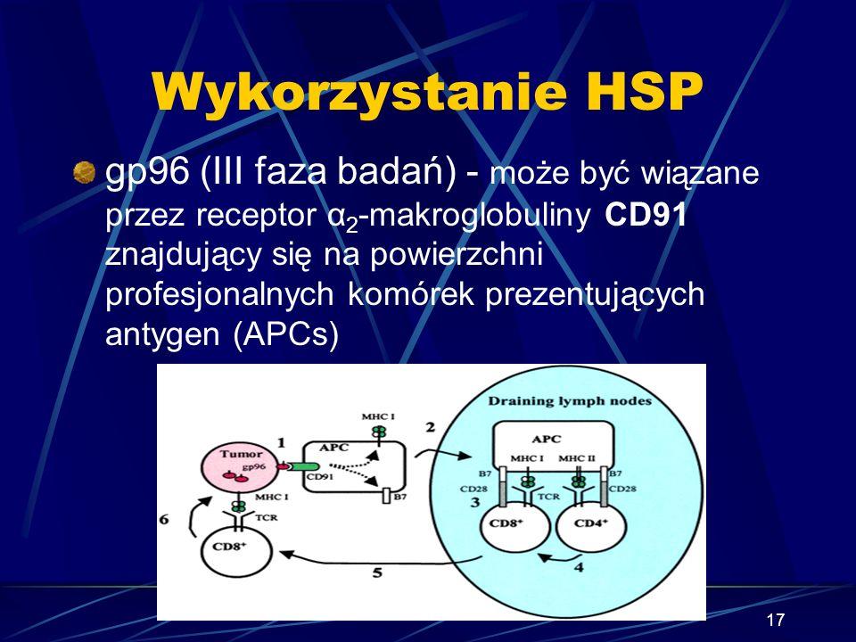 Wykorzystanie HSP