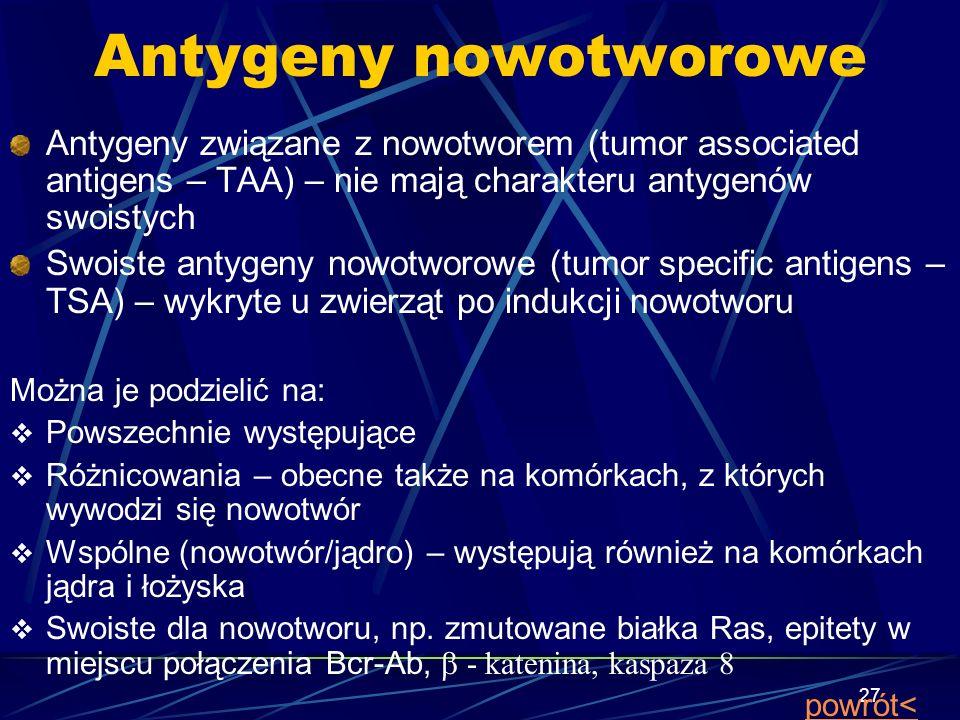 Antygeny nowotworowe Antygeny związane z nowotworem (tumor associated antigens – TAA) – nie mają charakteru antygenów swoistych.
