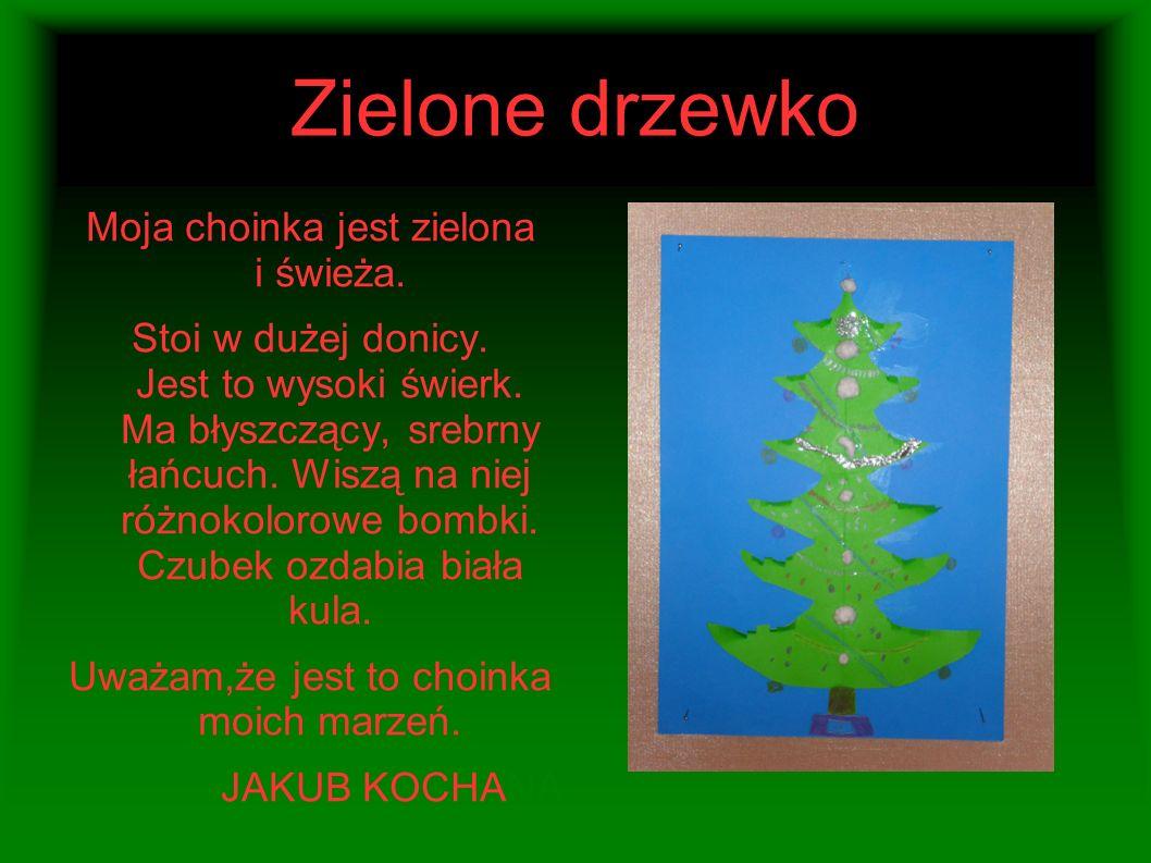 Zielone drzewko Moja choinka jest zielona i świeża.