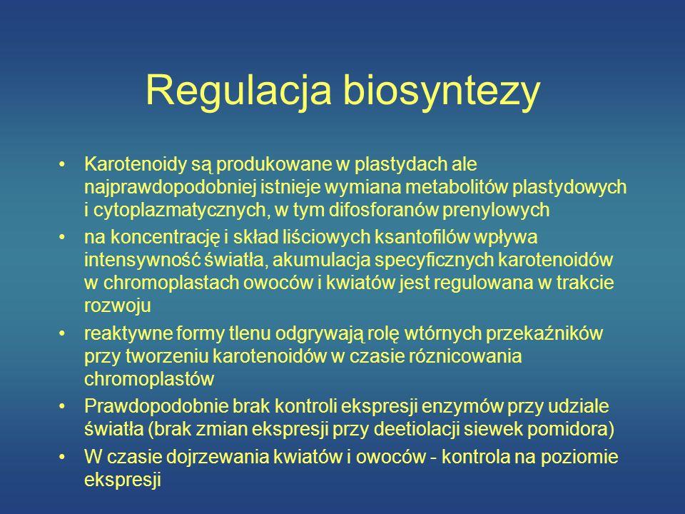 Regulacja biosyntezy