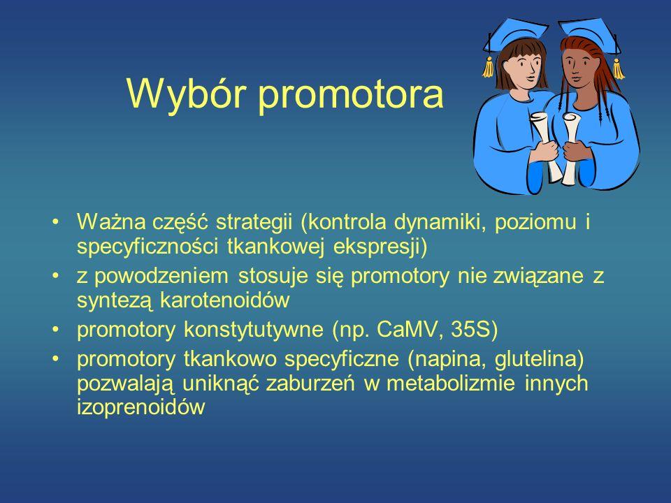Wybór promotora Ważna część strategii (kontrola dynamiki, poziomu i specyficzności tkankowej ekspresji)