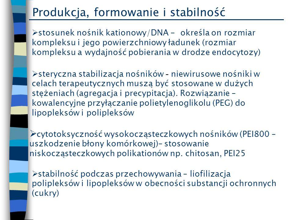 Produkcja, formowanie i stabilność