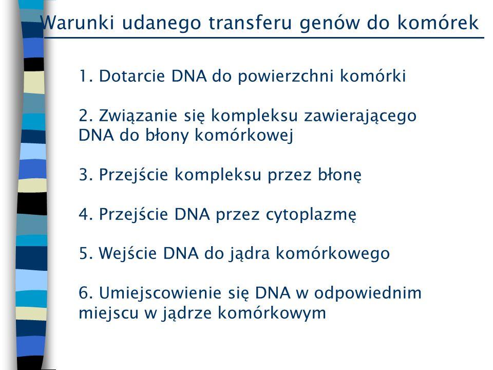 Warunki udanego transferu genów do komórek